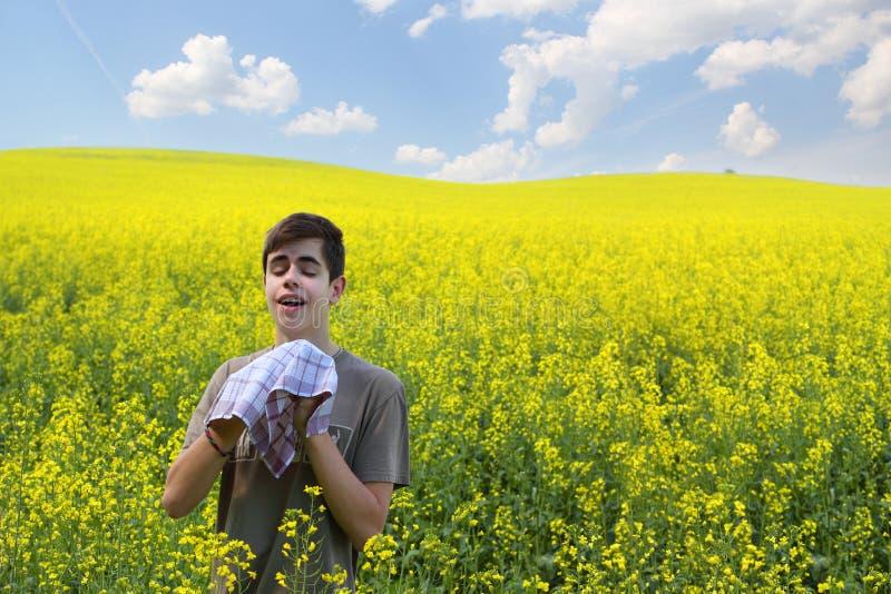 Allergie de pollen photographie stock libre de droits