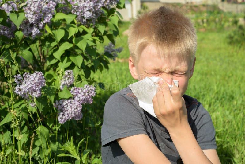 Allergie, zum des Bl?tenstaubs, Fr?hling, der Junge zu bl?hen mit Schal lizenzfreies stockfoto
