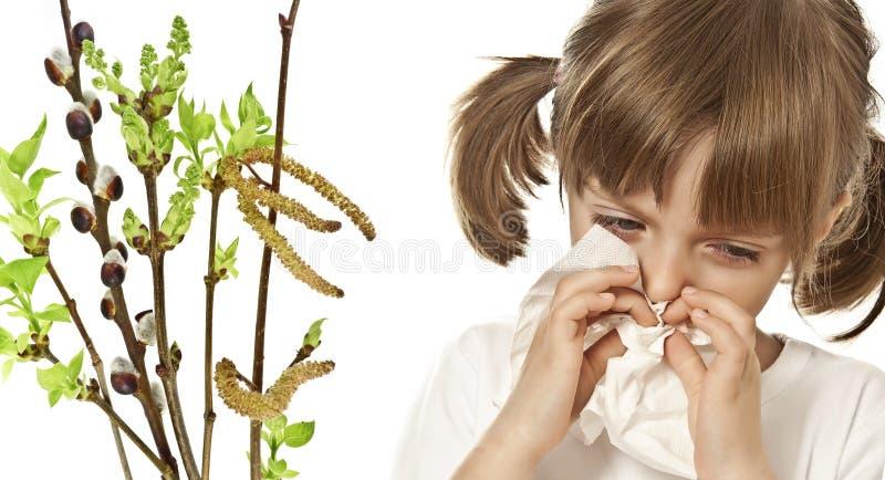 allergin royaltyfri fotografi
