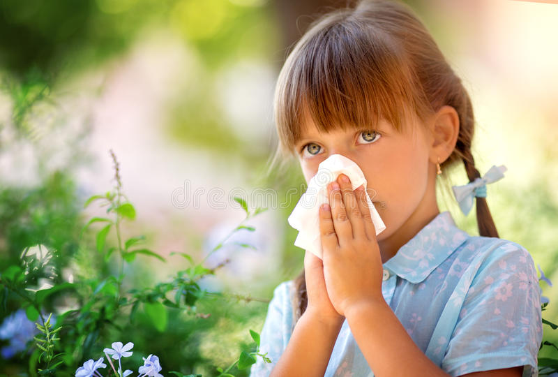 allergin Den ljusa rosa färgen blommar i flickans händer royaltyfria bilder