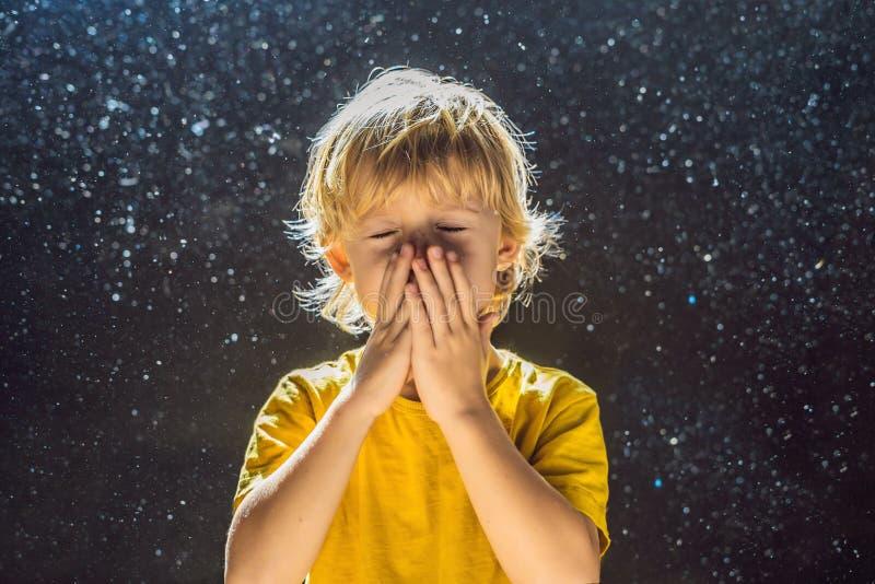 Allergin till dammpojken nyser, därför att han är allergisk att damma av dammflugor i luften som är bakbelyst vid ljus arkivbild