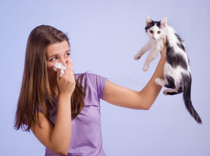 Allergisch voor kat stock foto