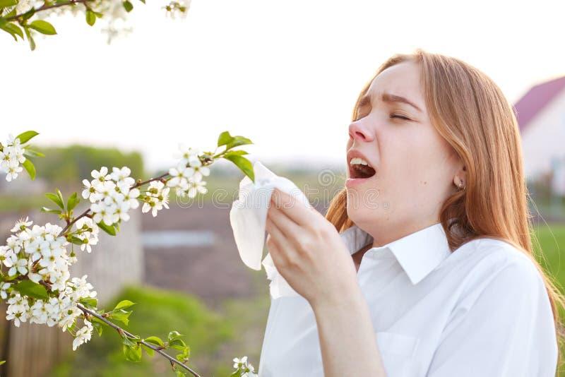 Allergitecken Den misshog unga kvinnan använder silkespappret, nyser hela tid, står nära blomningen under vårtid, bär elegant royaltyfria foton