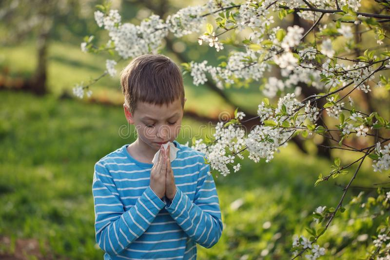 Allergy concept. Little boy is blowing his nose near blossoming flowers.  stock image