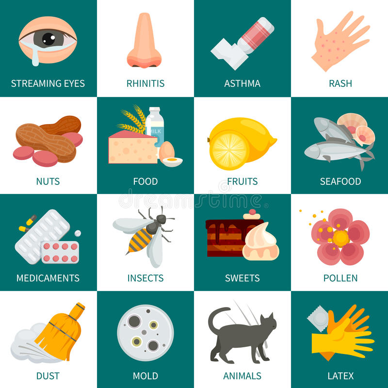 Allergy Icons Set. Allergy Square Icons Set. Allergy Vector Illustration. Allergy Flat Symbols. Allergy Design Set. Allergy Set royalty free illustration