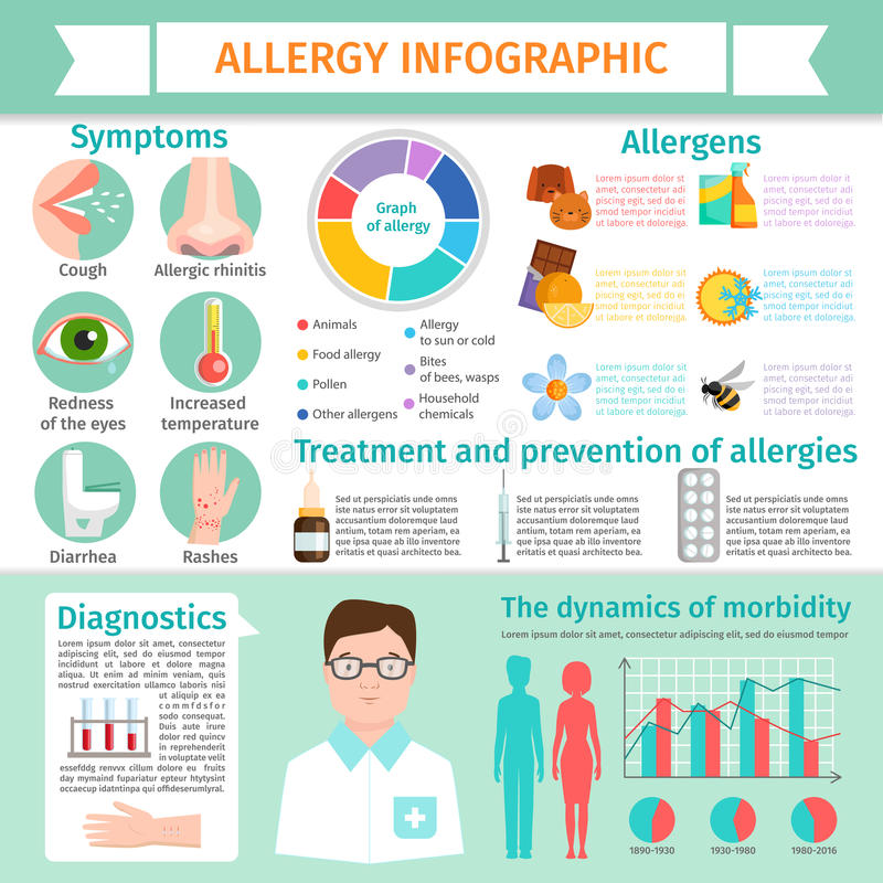 Allergy infographic symptoms information treatment allergic reaction disease elements flat illustration royalty free illustration