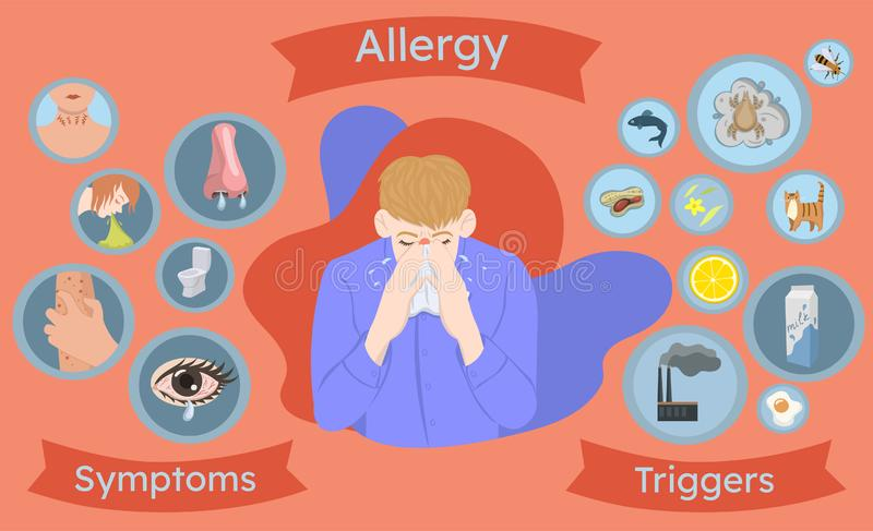 Allergy infographics, symptoms and triggers. Allergic man. Vector graphics royalty free illustration