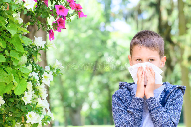 Allergy. Little boy has allergies from flower pollen stock images