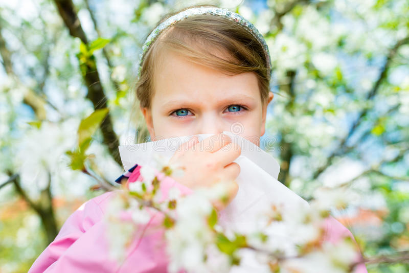 Allergy. Little girl is blowing her nose near spring tree in bloom - sneezing girl. Child with a handkerchief royalty free stock image