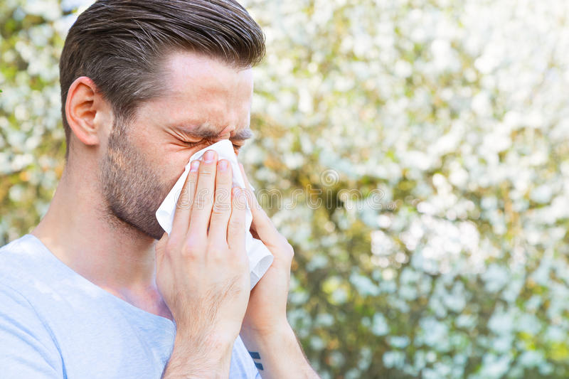Allergy, Spring, man royalty free stock images