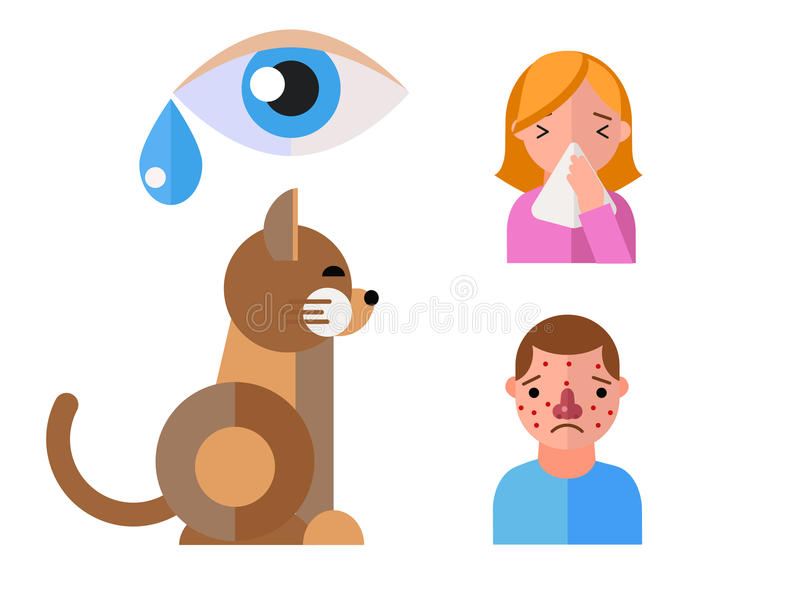 Allergy symbols animal disease healthcare cat viruses and health flat label people with illness allergen symptoms. Disease information vector illustration vector illustration