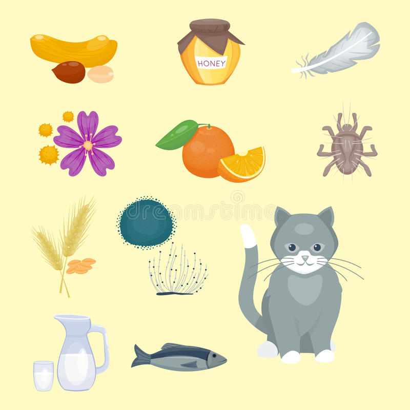 Allergy symbols disease healthcare food viruses health flat illness allergen symptoms disease information vector stock illustration