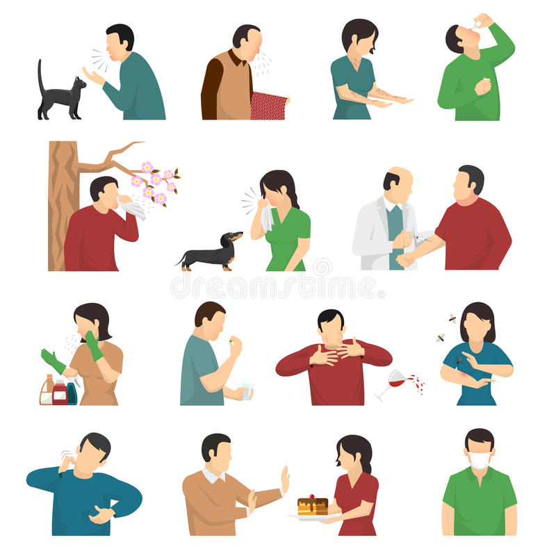 Allergy Symptoms Causes Flat Icons Set. Symptoms and causes of allergic reaction flat icons collection with food dust dog and cats allergens vector illustration stock illustration