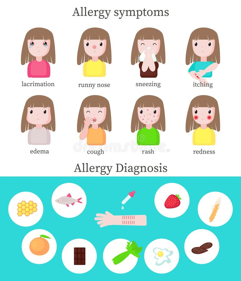 Allergy symptoms and diagnosis infographics, vector flat illustration. Allergy symptoms and diagnosis infographics, vector flat style design illustration stock illustration