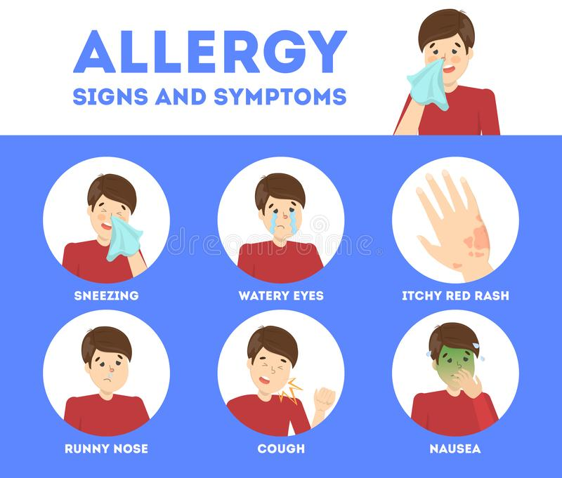 Allergy symptoms infographic. Runny nose and itchy skin. Seasonal disease. Sign of allergy. Isolated vector illustration in cartoon style vector illustration