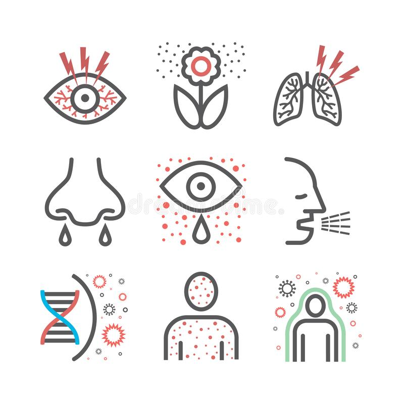 Allergy symptoms line icons infographic. Vector sign for web graphic. Allergy symptoms icons infographic. Vector sign for web graphic royalty free illustration