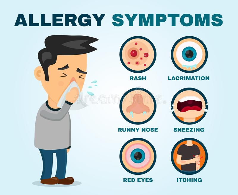 Allergy symptoms problem infographic. Vector. Flat cartoon illustration icon design. Sneezing person man character royalty free illustration