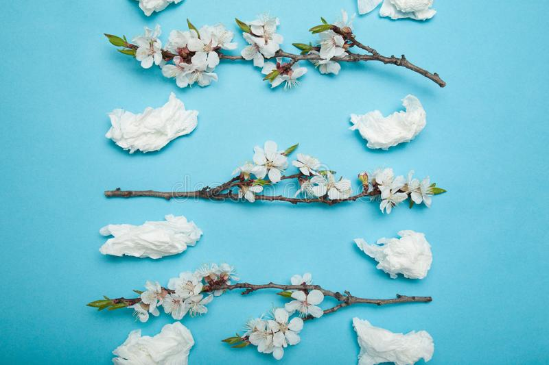 Allergy to flowering plants in spring, concept. Used nasal wipes and flowers on a blue background stock image
