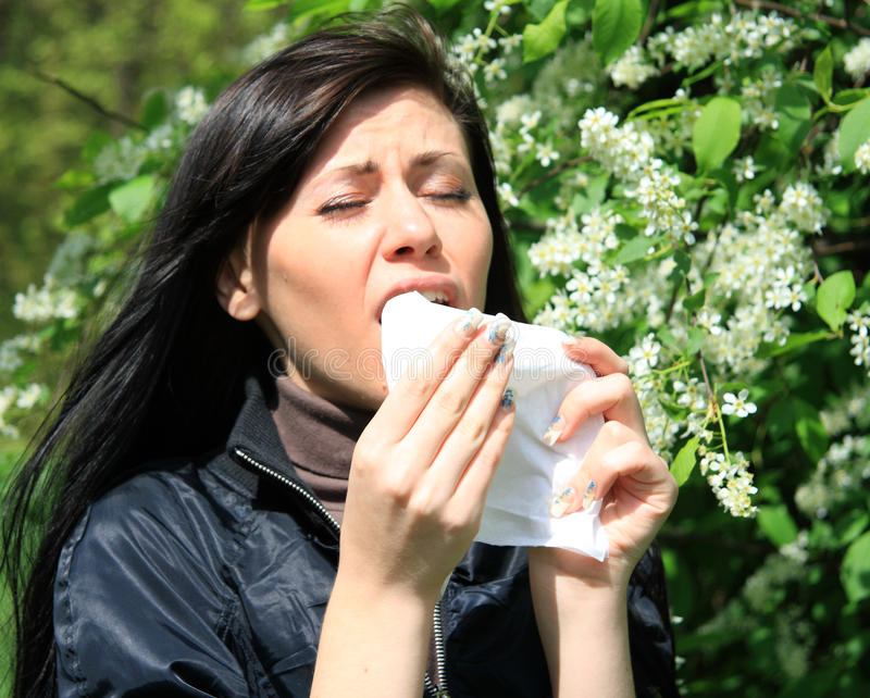 Download Allergy to pollen stock image. Image of spring, season - 14276933