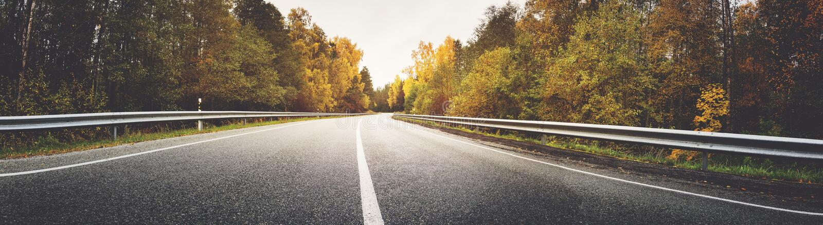 Alley in autumn. Asphalt road with beautiful trees on the sides in autumn stock photos