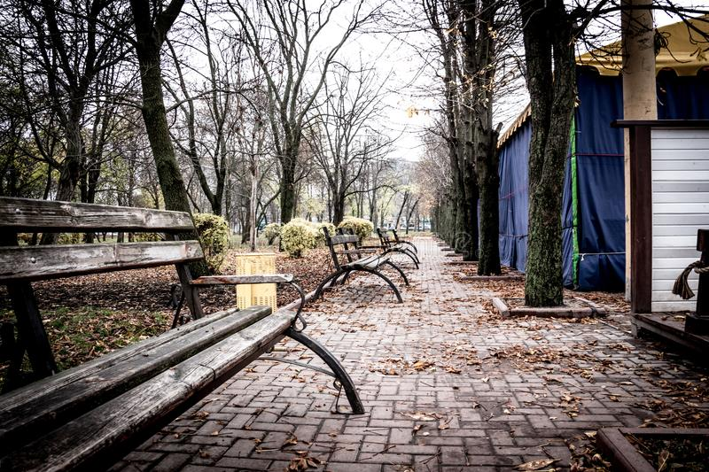 Alley with Benches in dendro park in Kropyvnytskyi, Ukraine. An alley with old benches in dendro park in Kropyvnytskyi city, Ukraine royalty free stock photography