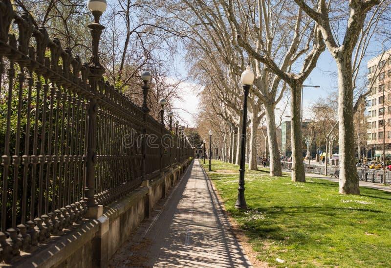 Alley in Ciutadella Park or Parc de la Ciutadella in Barcelona. Barcelona, Spain - March 21, 2018: Alley in Ciutadella Park or Parc de la Ciutadella in Barcelona stock images