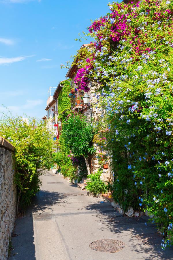 Alley with entwined houses in Antibes, France. Picturesque alley with entwined houses in Antibes, Cote Azur, France royalty free stock images