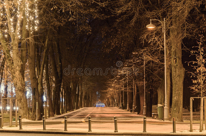Alley from european city, night winter time, Bucharest Romania royalty free stock photos