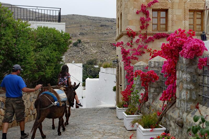 Alley in Lindos with donkey stock photo