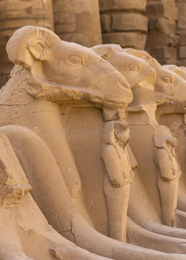 Free Alley Of The Ram-headed Sphinxes. Karnak Temple Royalty Free Stock Image - 170636226