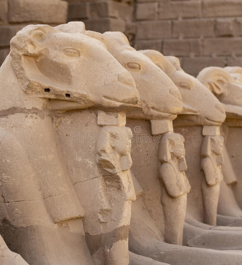 Free Alley Of The Ram-headed Sphinxes. Karnak Temple. Luxor, Egypt. Stock Image - 172411191