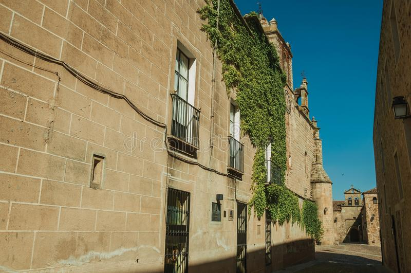 Alley with old stone buildings and creepers at Caceres stock images