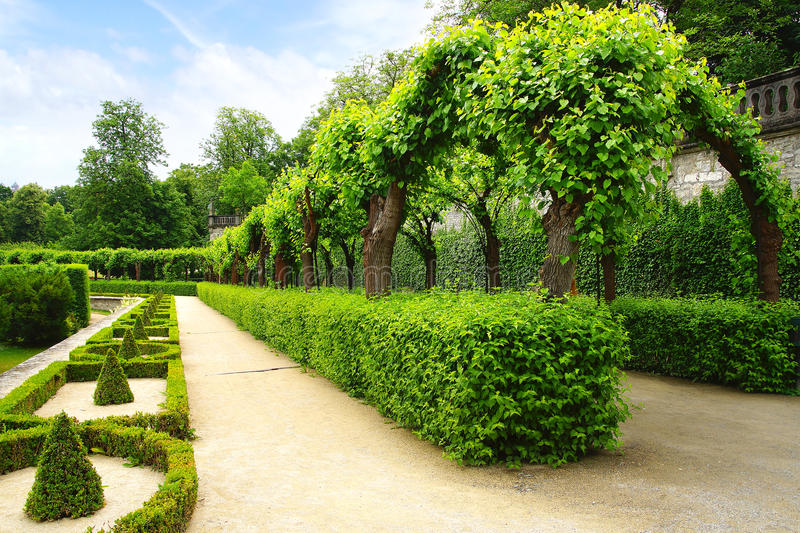 Download Alley Park In The Wurzburger Residenze. Germany Stock Image - Image: 31941641