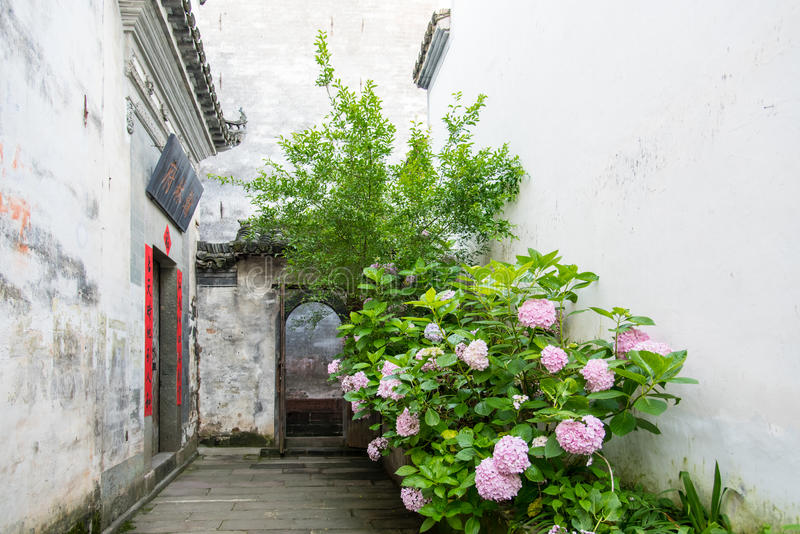 Alley stock photography