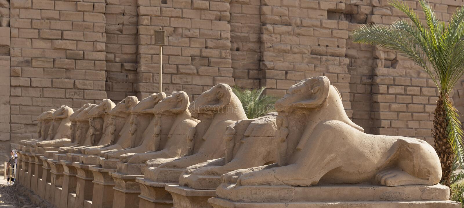 Alley of the ram-headed Sphinxes. Karnak Temple, complex of Amun-Re. Luxor, Egypt stock photo