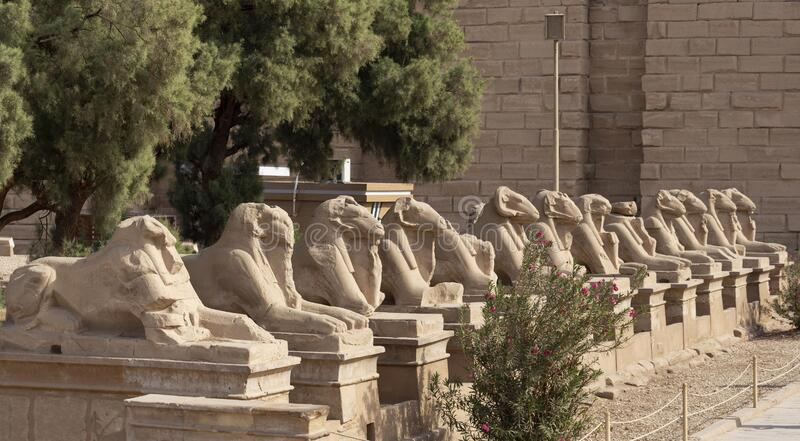 Alley of the ram-headed Sphinxes. Karnak Temple, complex of Amun-Re. Luxor, Egypt stock photos