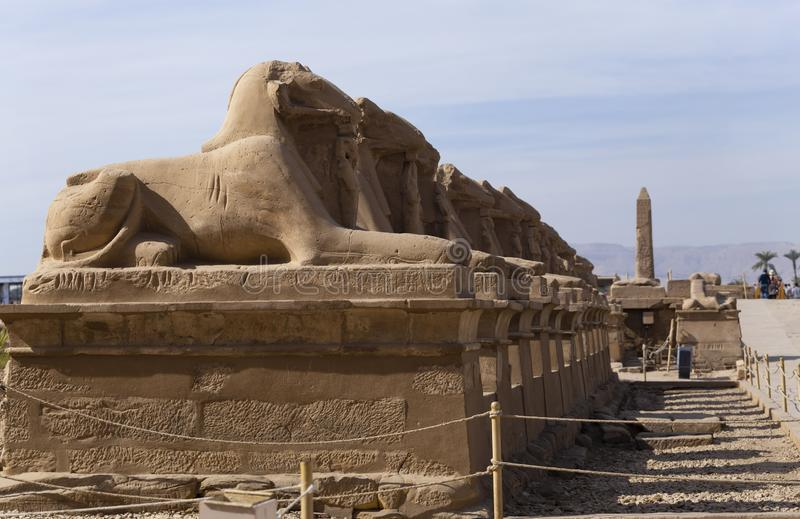 Alley of the ram-headed Sphinxes. Karnak Temple. Luxor, Egypt. Africa, desert stock image