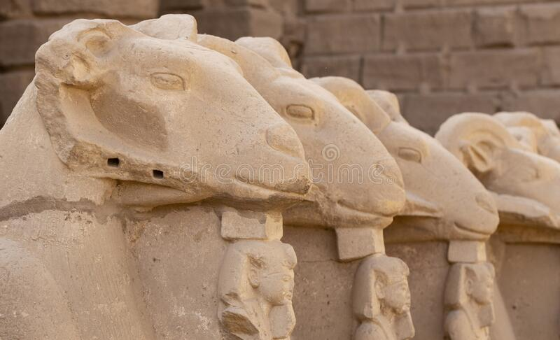 Alley of the ram-headed Sphinxes. Karnak Temple. Luxor, Egypt. Alley of the ram-headed Sphinxes. Karnak Temple, complex of Amun-Re. Luxor, Egypt royalty free stock photography