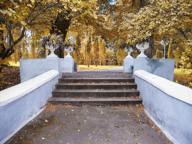 Alley with steps in the autumn park stock photo