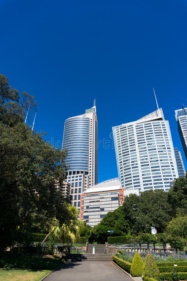 Alley in Sydney Royal Botanic Garden with cityscape stock images