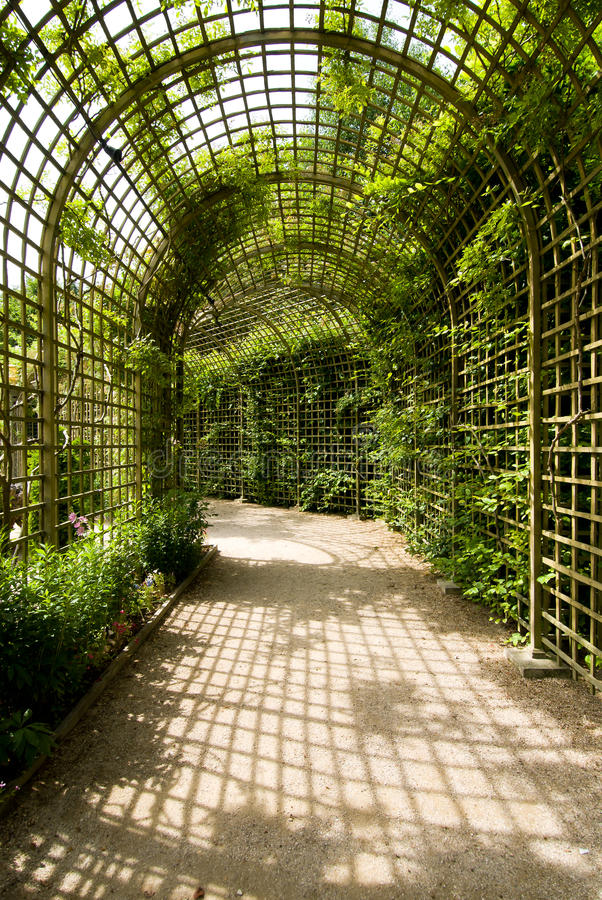 Alley and trellises stock photography