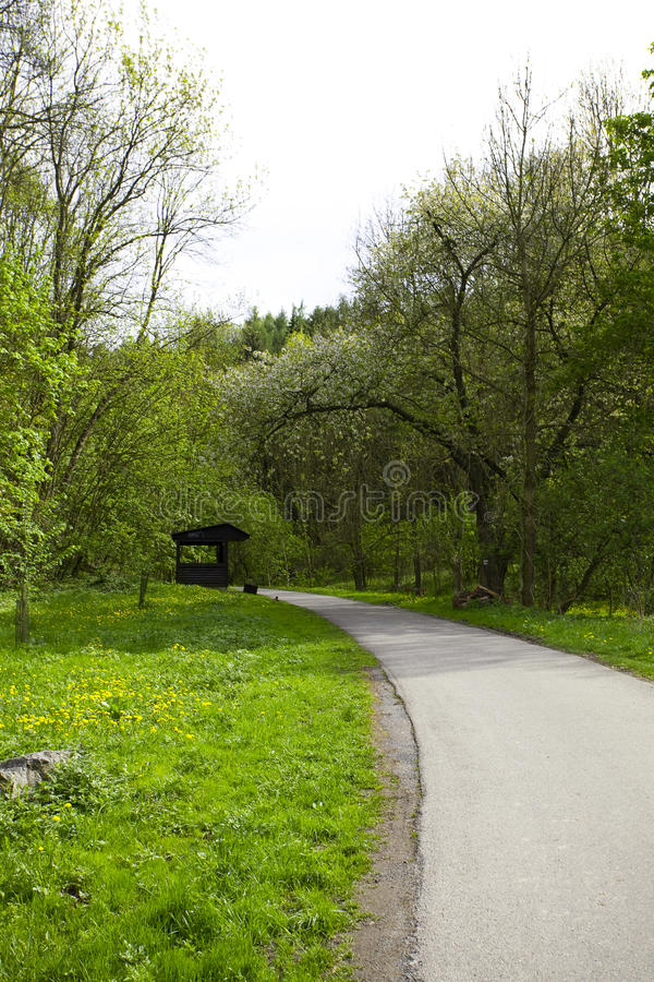 Download Alley With A Wooden  Gazebo In The Woods Stock Images - Image: 17094654