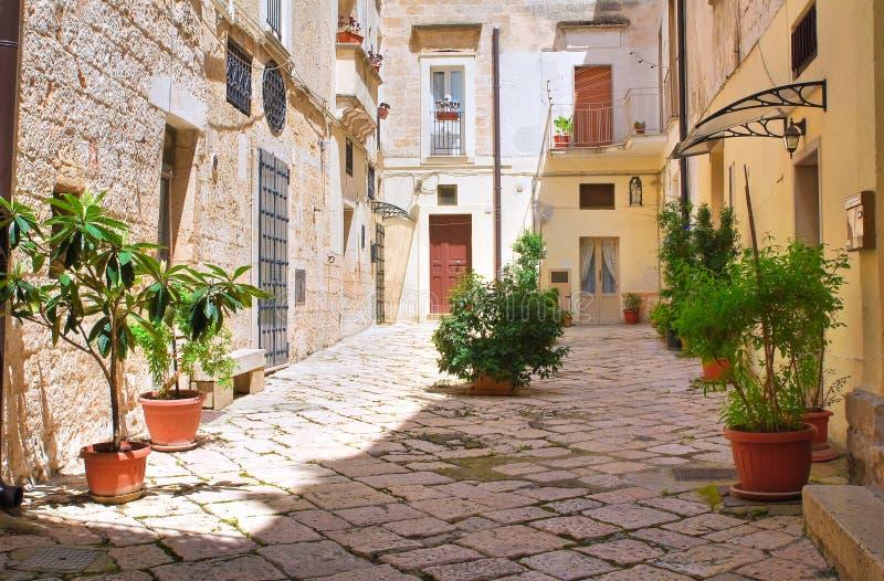 Alleyway. Altamura. Puglia. Italy. Alleyway of Altamura. Puglia. Italy stock photography