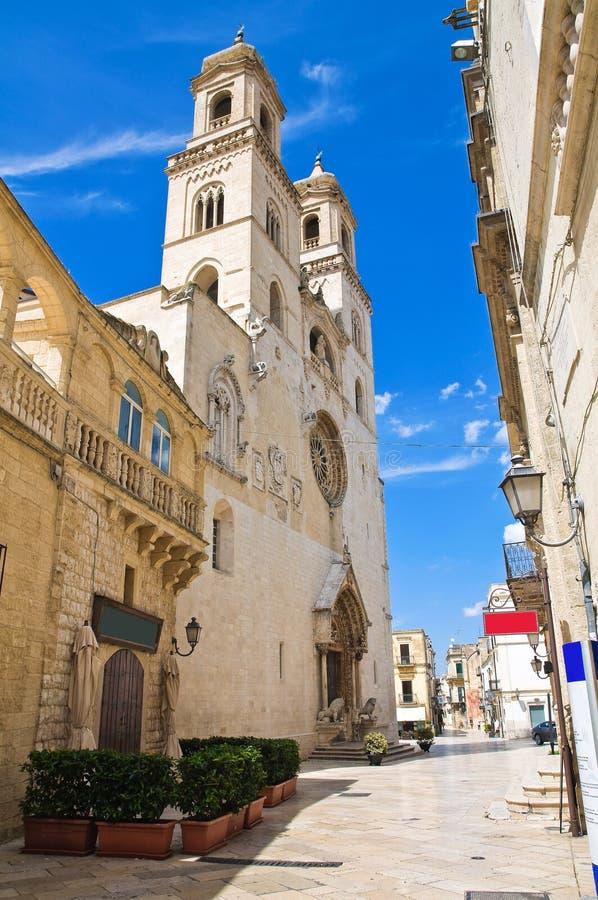 Alleyway. Altamura. Puglia. Italy. Alleyway of Altamura. Puglia. Italy royalty free stock photography