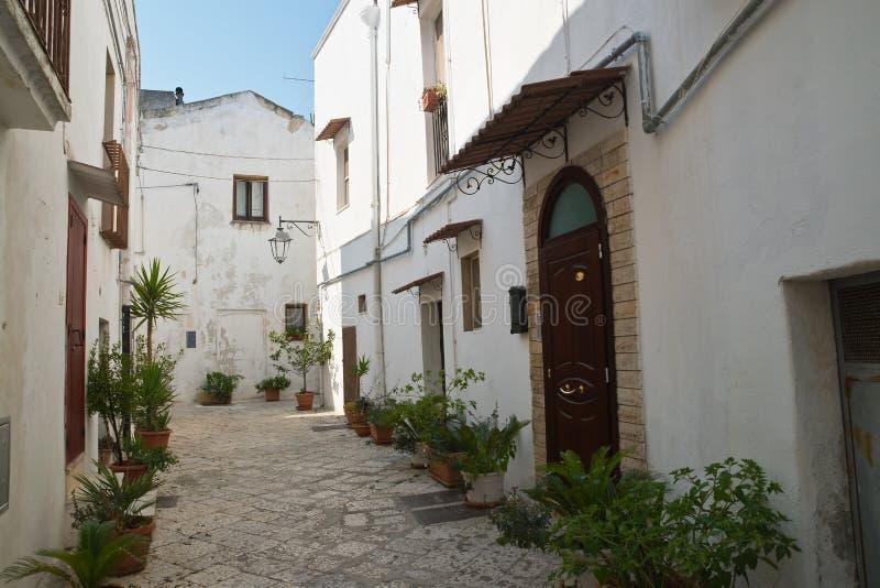 Alleyway. Castellaneta. Puglia. Italy. Characteristic alleyway of Castellaneta. Puglia. Southern Italy royalty free stock photos