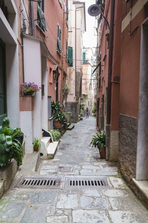 Alleyway w cinque terre Italy obrazy royalty free