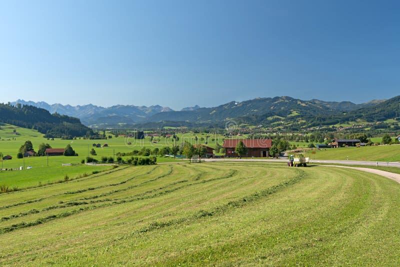 Download Allgaeu photo stock. Image du pâturage, pré, montagnes - 77159044