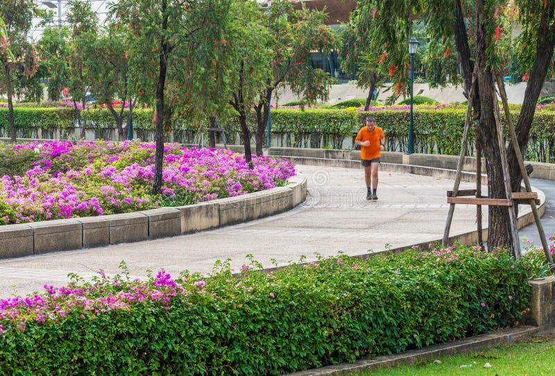 Allgemeiner Park für das Rütteln in Bangkok, Thailand stockfotografie