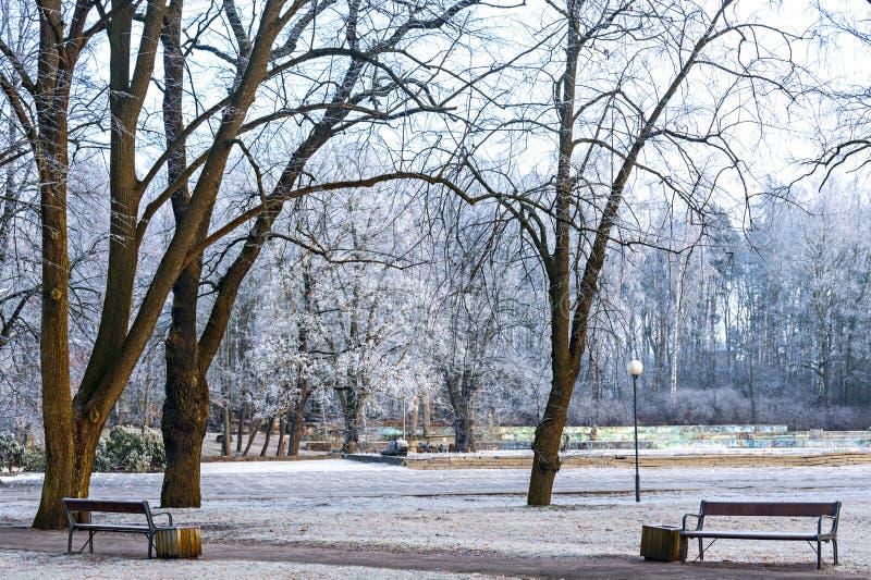 Allgemeiner Park in Jurmala, Lettland lizenzfreies stockfoto