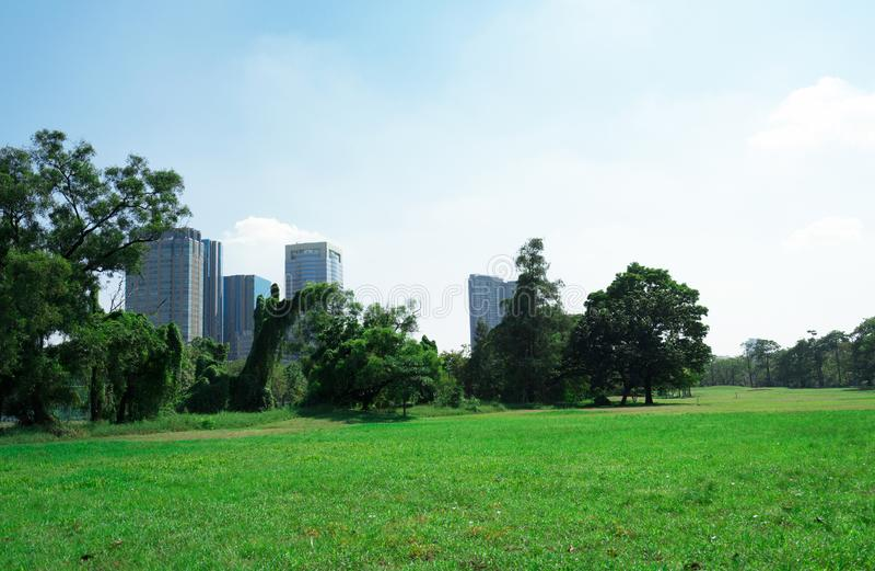 Allgemeiner Park mit klarer blauer schöner Natur des Himmels so lizenzfreies stockbild